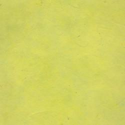 Papier népalais épais vert anis