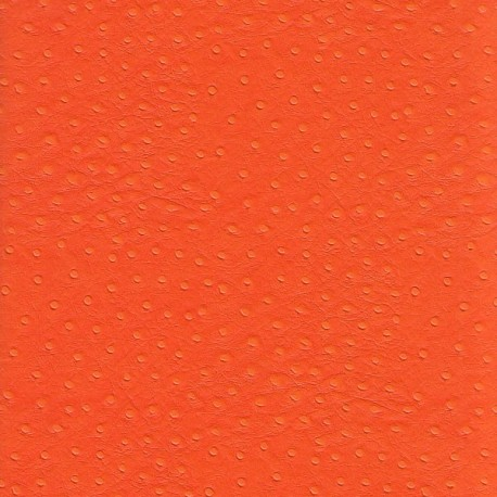 Autruche orange