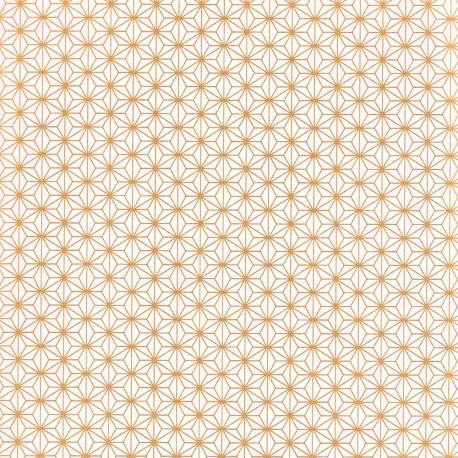 Papier japonais Ashanoa blanc