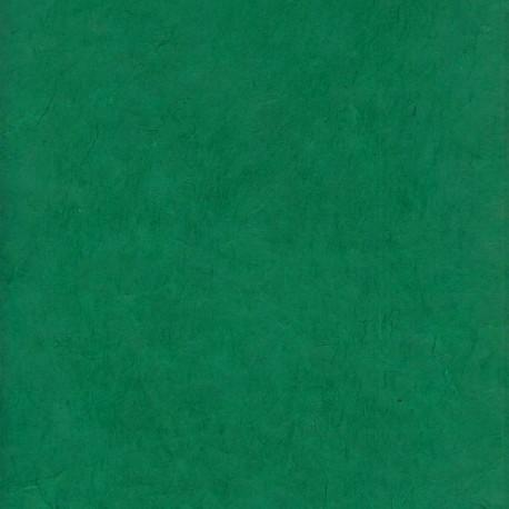 Papier népalais épais vert