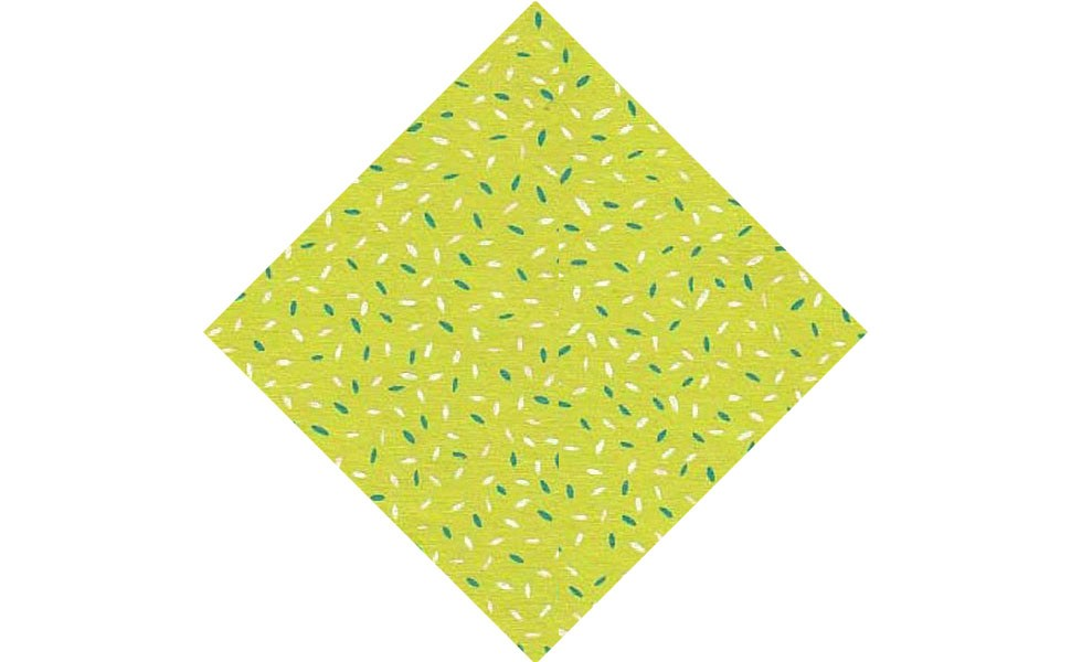 Papier d'Inde Candy vert